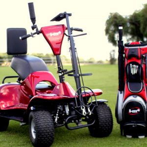 Electric Golf Buggy I- M4